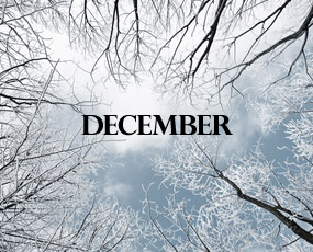 A look at Decembers past